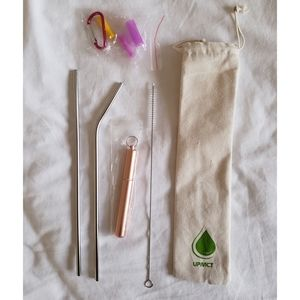 Reusable Stainless Steel Straw Set w Silicone Tips